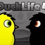 Vida de pato 4